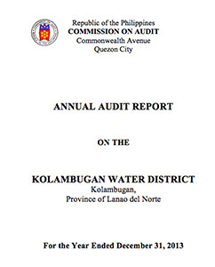 Annual Audit Report CY 2013
